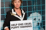 Taunton Deane MP backs new campaign targeting the cruel UK puppy trade